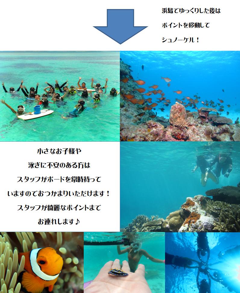石垣島,沖合シュノーケル